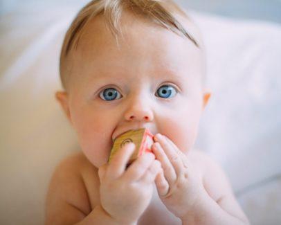 1歳の子供がおもちゃをくわえている画像